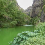 L'eau verte de la ravine du Bernica.
