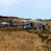 Savane du Cap La Houssaye avec la route des Tamarins.