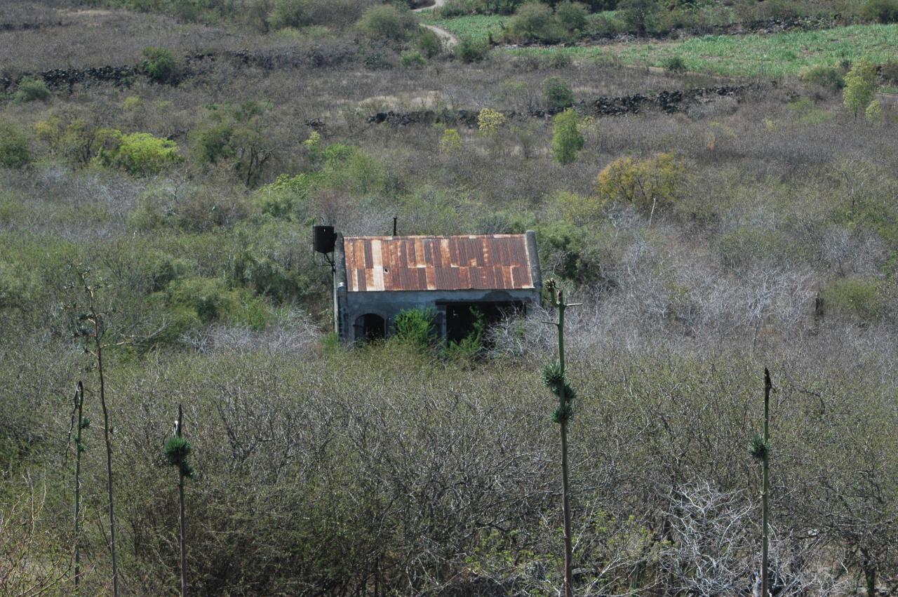 Moulin Kader dans la savane du Cap La Houssaye.