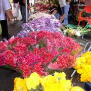 Marché de St Paul fleurs.