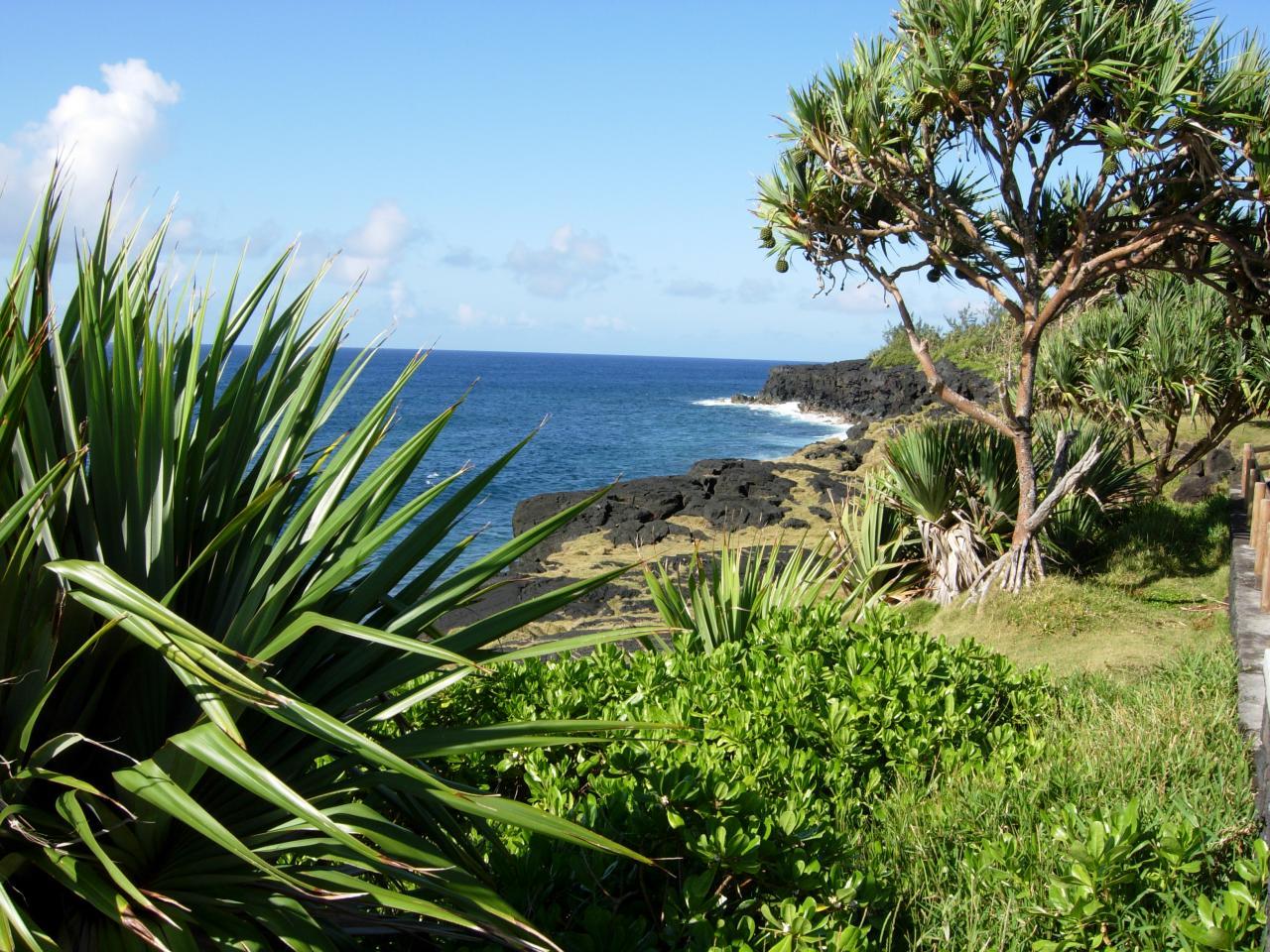 Le littoral à St Philippe.