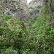 La ravine du Bernica.