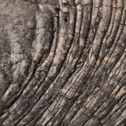 Laves cordées coulée 2001 D Helsens