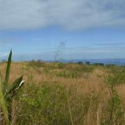 Vue panoramique sur la savane de l'Ouest, Luc Souvet.