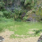 Le bassin Vital 3.