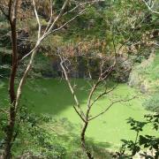 Le bassin Vital 4.