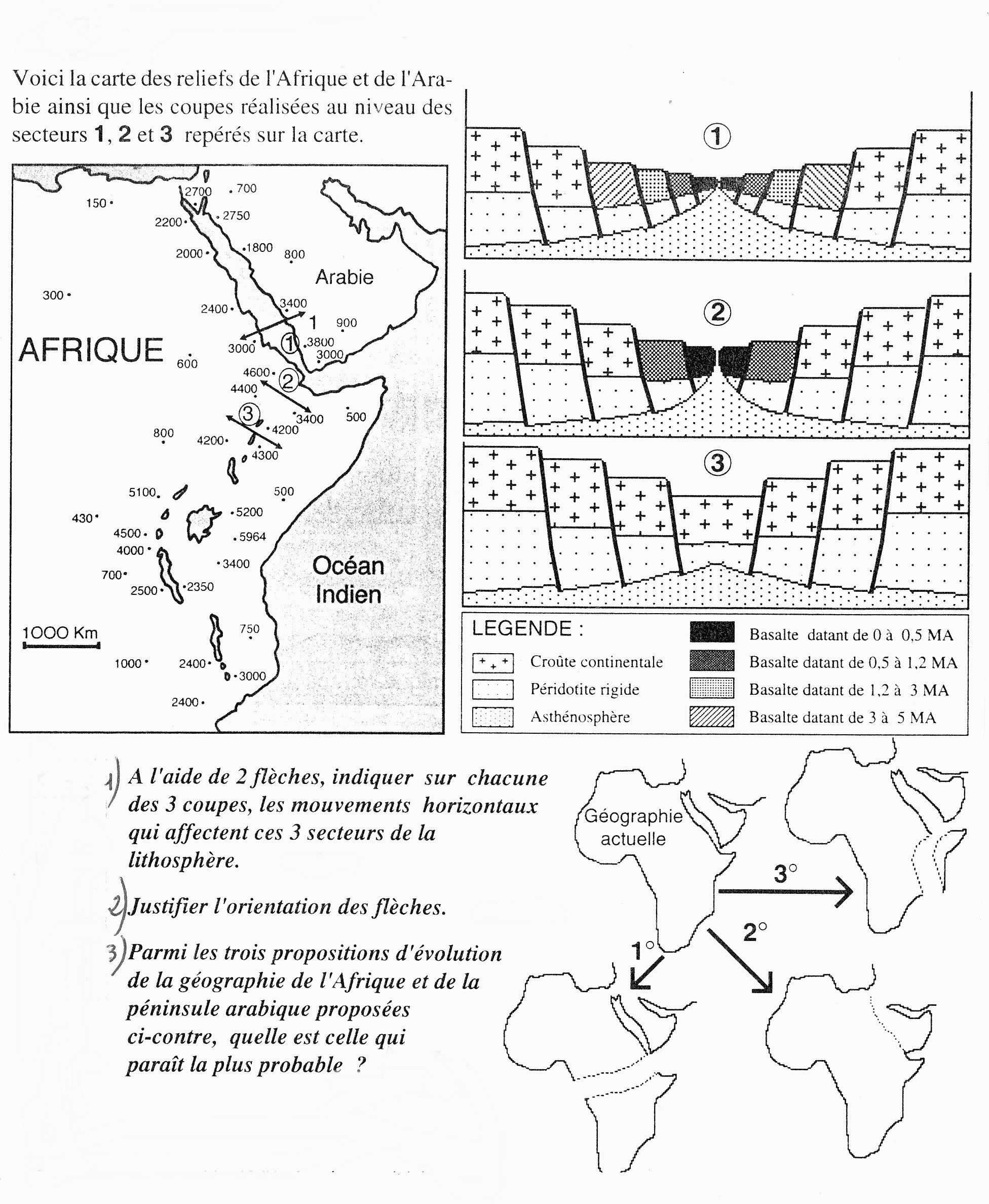 Activité interne du globe : la tectonique des plaques en 4ème.